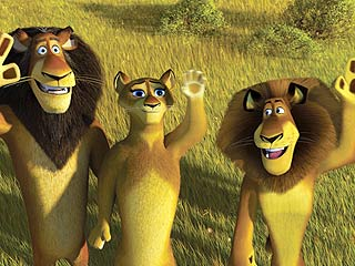 Three lions in Madagascar 2: Escape 2 Africa http://animatedfilmreviews.blogspot.com/2012/12/madagascar-escape-2-africa-2008-full-of.html