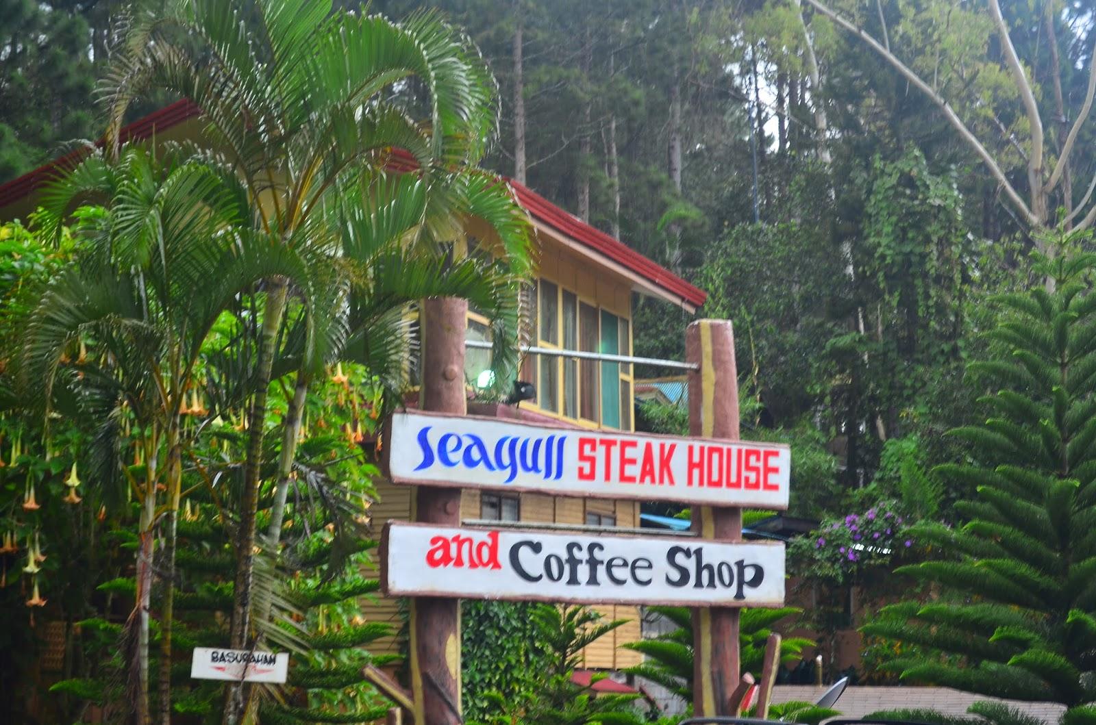 vacation spot - dream vacation destination: seagull mountain resort