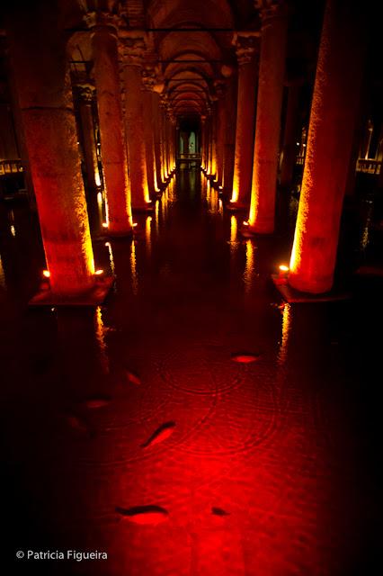 Fish in the Roman Cistern