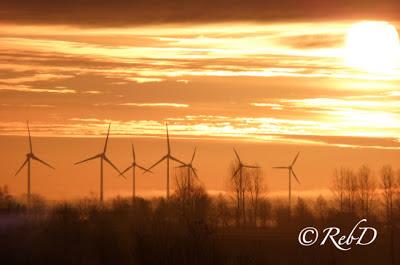 vindkraftverk i soluppgång. foto: Reb Dutius