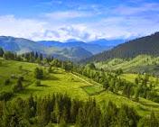Продаються земельні ділюнки в Карпатах недорого...