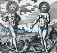 Los sexos opuestos, Hombre Gallo Sol, Mujer Gallina Luna