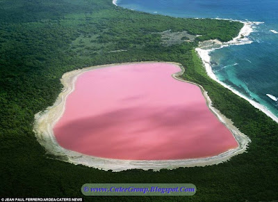 Mysterious Pink Lake in western Australlia
