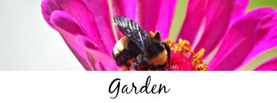 http://www.stringtownhome.net/search/label/Garden