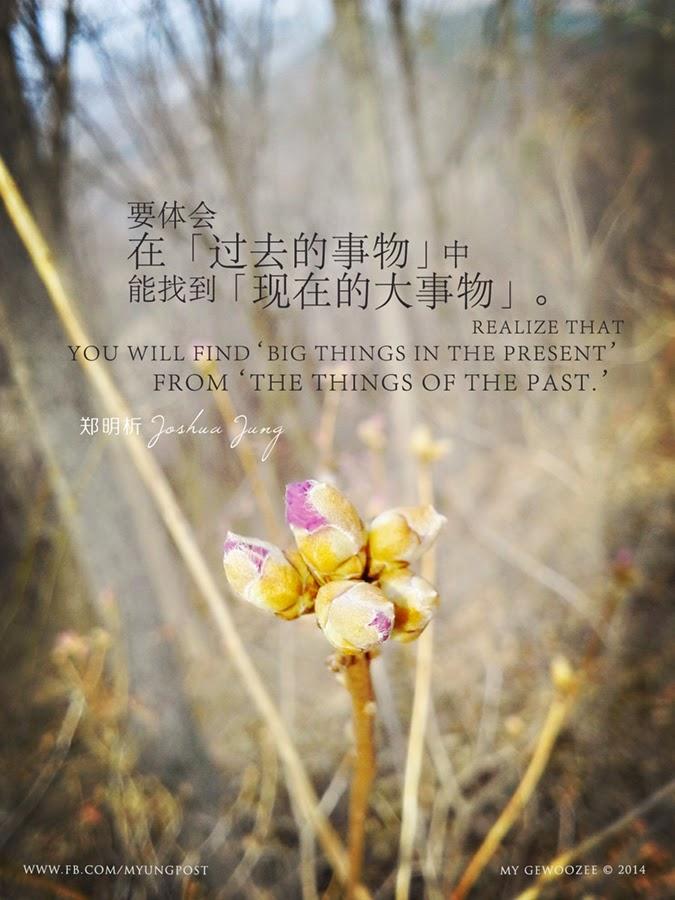 郑明析,摄理,月明洞,植物,Joshua Jung, Providence, Wolmyung Dong, plant