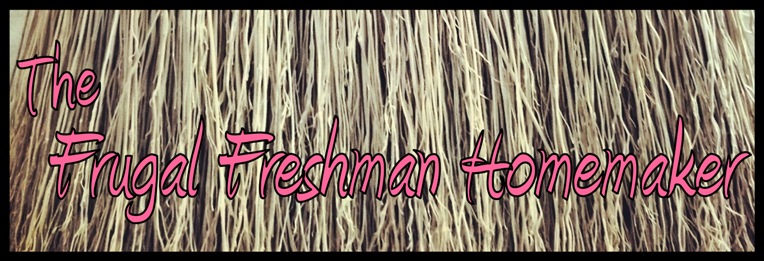 The Frugal Freshman Homemaker
