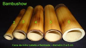 Bambu Cana da india tratado e flambado