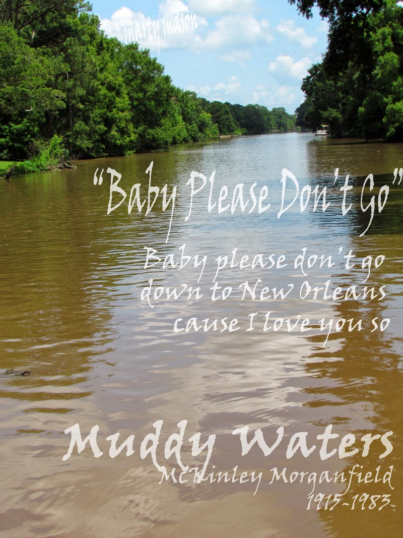 A Muddy Waters lyric to live by........Marty Mason