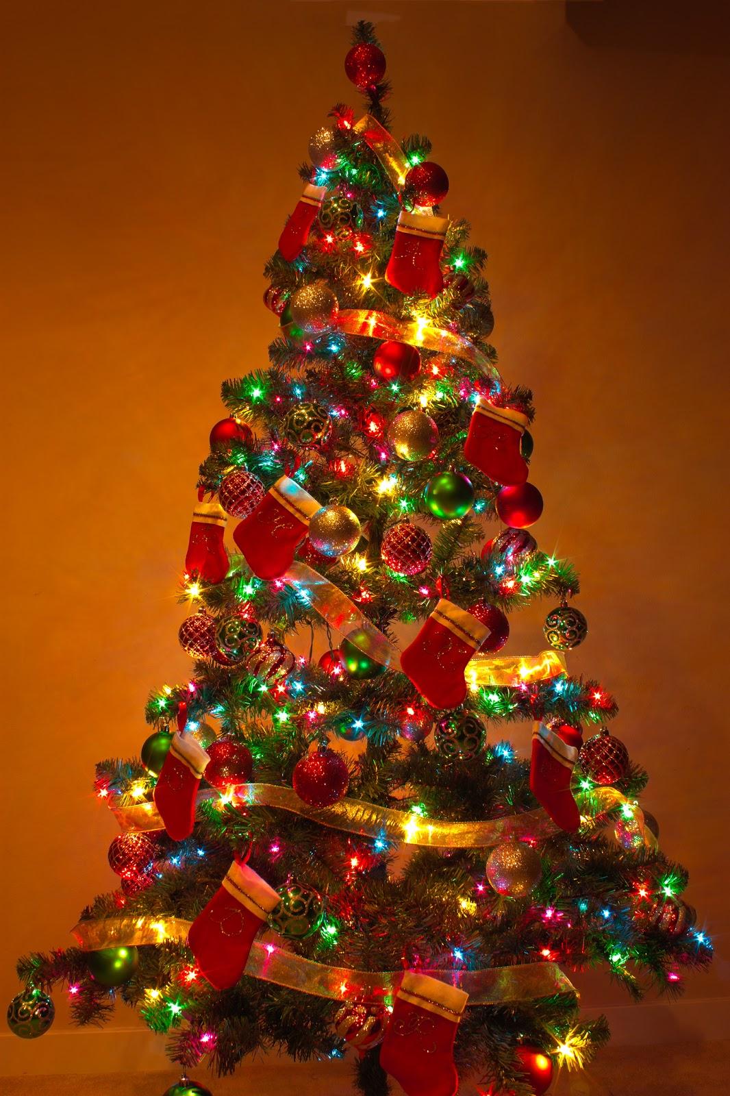 a estas alturas del ao la mayora de los hogares se encuentran adornadas para la navidad prxima y esto incluye el tradicional rbol decorado con luces