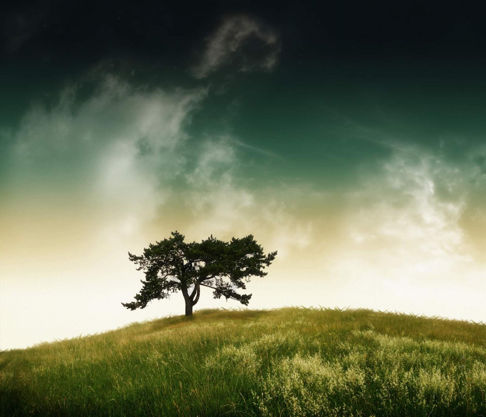 La terra di mezzo con te amore mio sento finalmente il for Posso ottenere un mutuo solo sulla terra