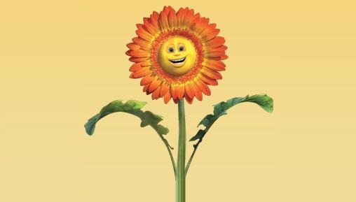Amostra Gratis Sementes de Flores