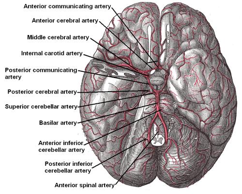 ischemie hersenen