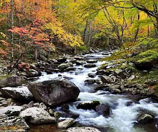 Great Smoky Mountains National Park (Best Honeymoon Destinations In USA) 3