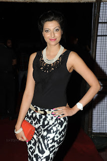 Hamsa Nandini pos at attarintiki daredi audio 022.jpg