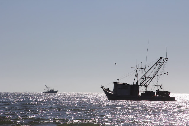 Shrimp Boats at Matagorda Beach