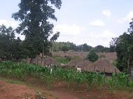 Gulu Subdivision