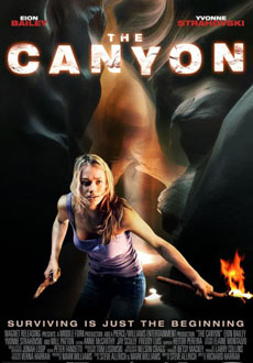 The Canyons 2013 poster
