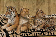 Ref: animales salvajes 3
