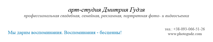 арт-студия  Дмитрия Гудзя
