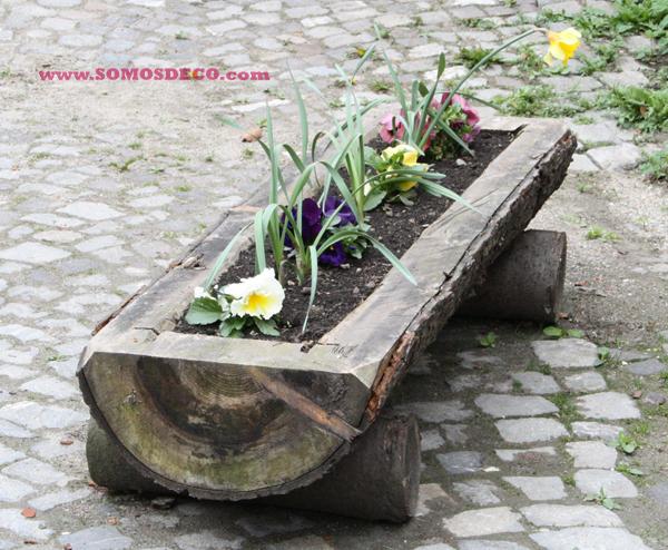 Imagenes de troncos con ramas para adornos en rustico - Troncos para jardin ...