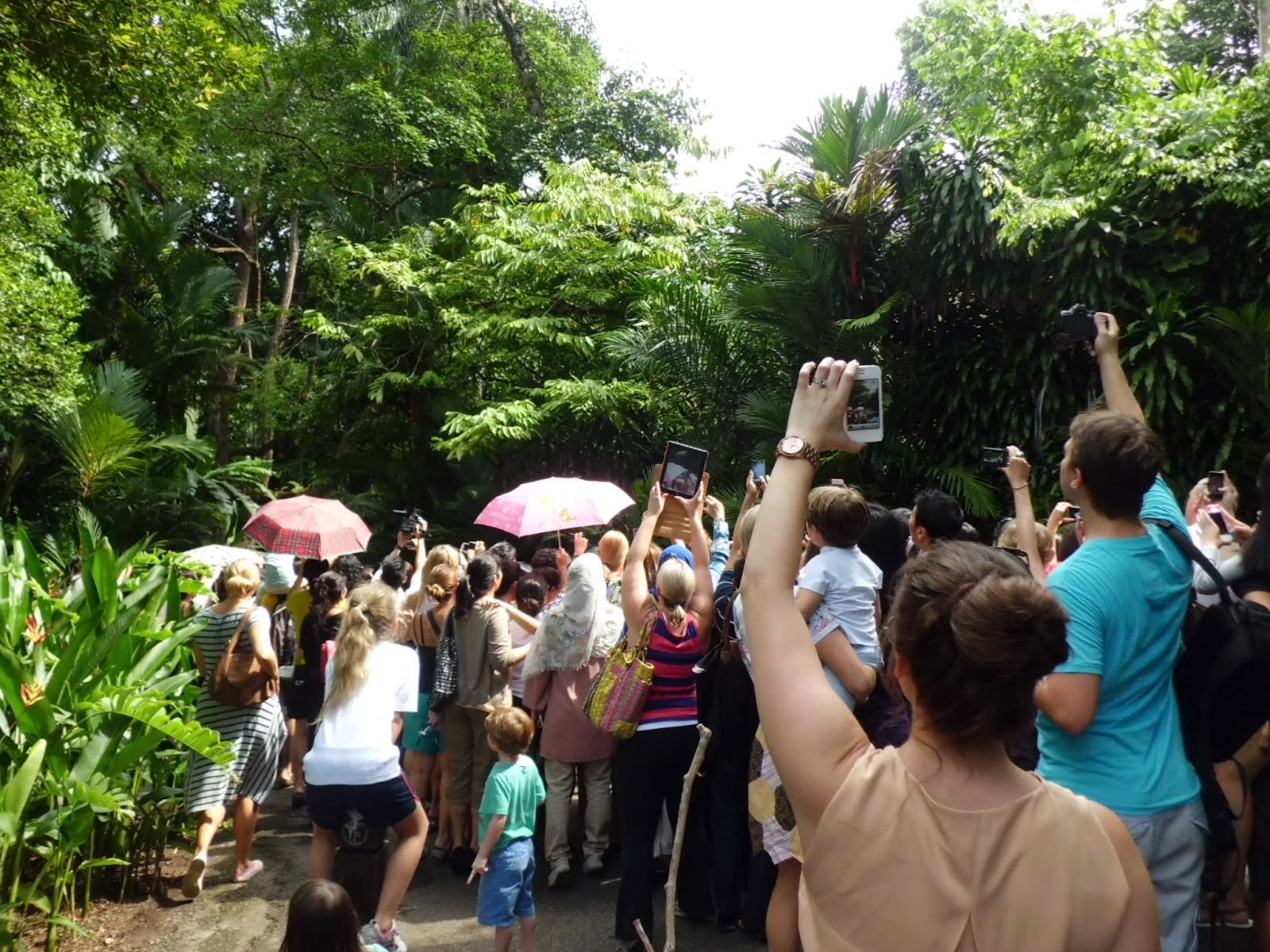 Britain's Prince William and his wife, Catherine (Kate), arriving at the Singapore Botanical Garden @ 3:20pm