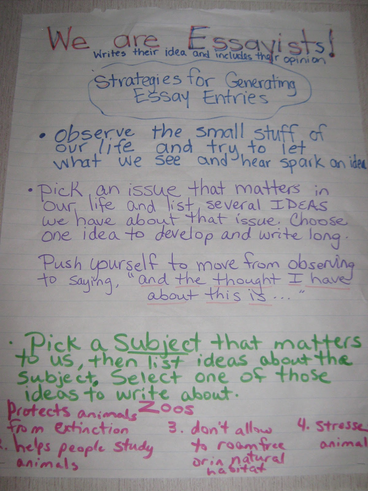 5th grade persuasive essay anchor papers