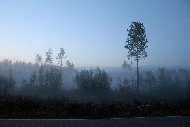 Finnish Midsummer, Midnight sun Finland, misty landscape