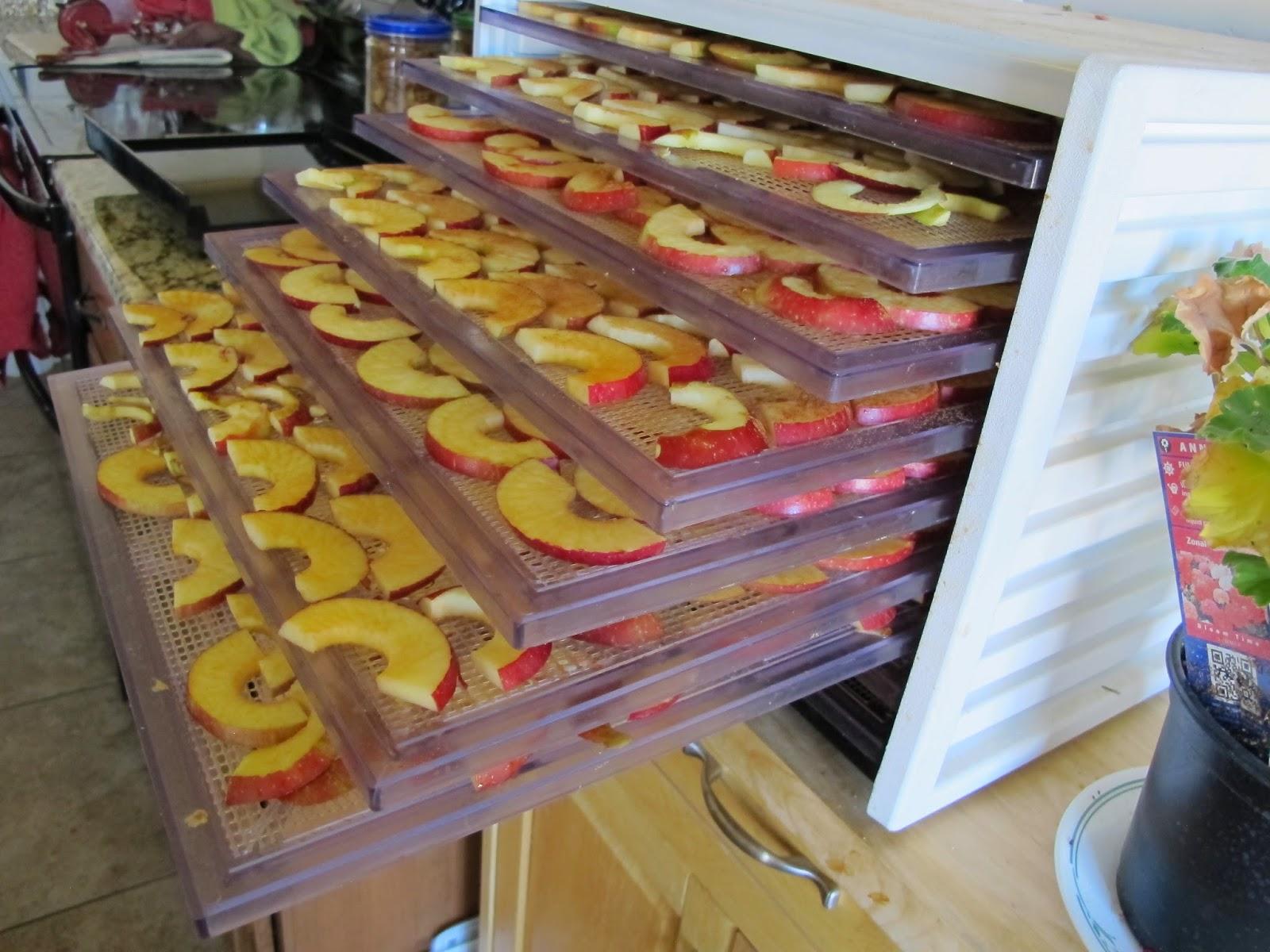 Yummy Dried Apples