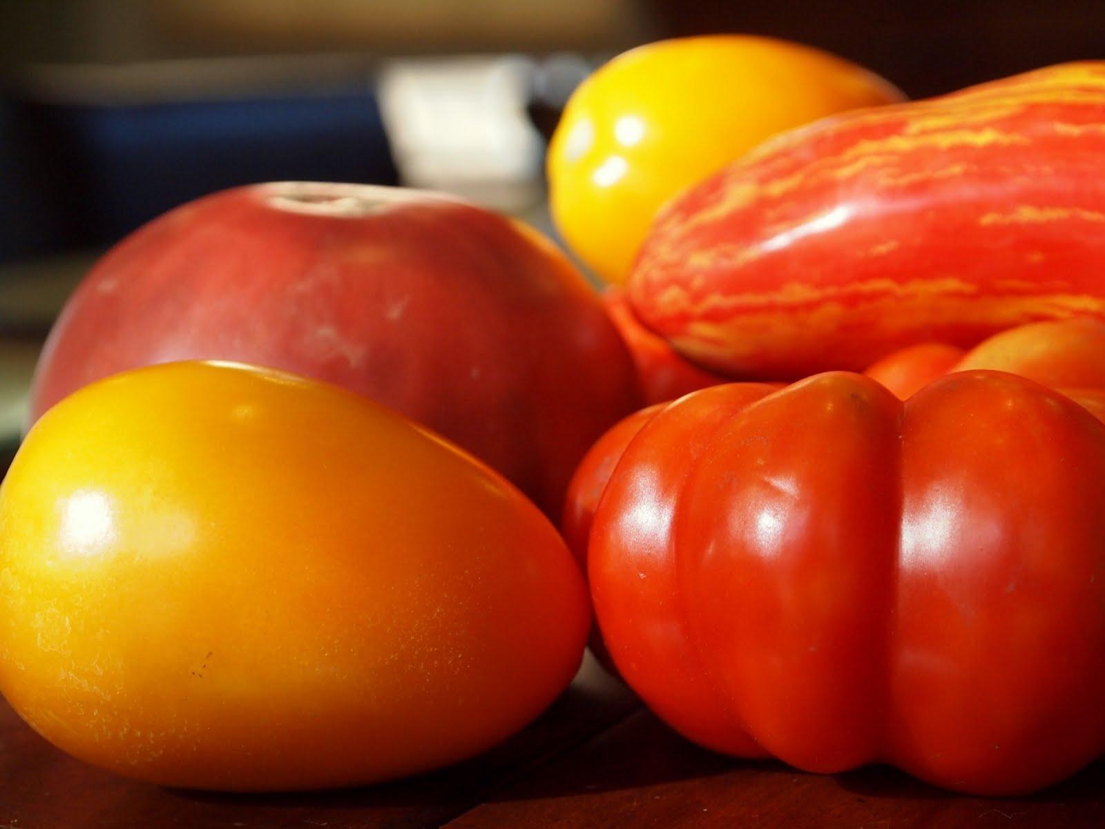 bEATS: Corn and Tomato Pie