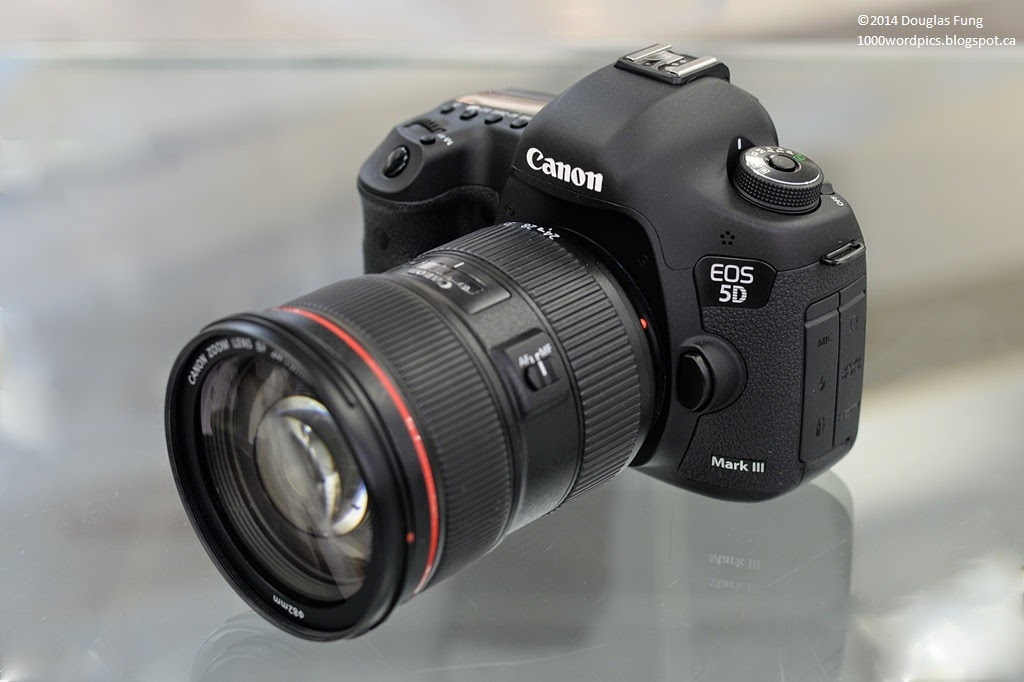 Canon EF 70-200mm f/2.8L IS II USM Telephoto Zoom Lens ...