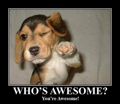 Image result for you are awesome