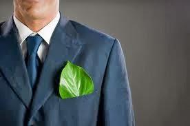 Consultor Verde