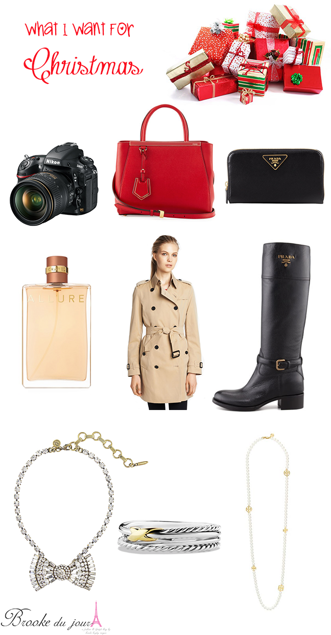 Burberry trench coat Nikon D800 Prada wallet