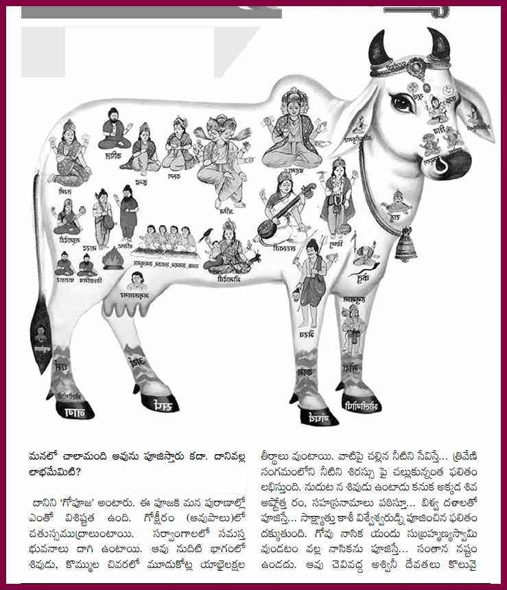 cow essay in telugu language Are you sure you want to remove telugu essays from your list.