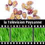 TV Paysanne