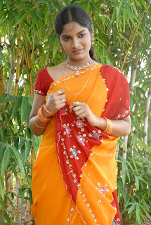 Keerthi Saree Pictures (20)