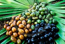 Bacche della Serenoa repens, pianta medicamentosa