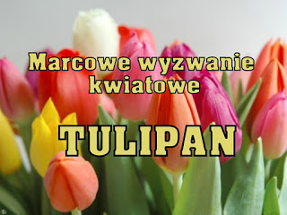 Wyzwanie kwiatowe: tulipan