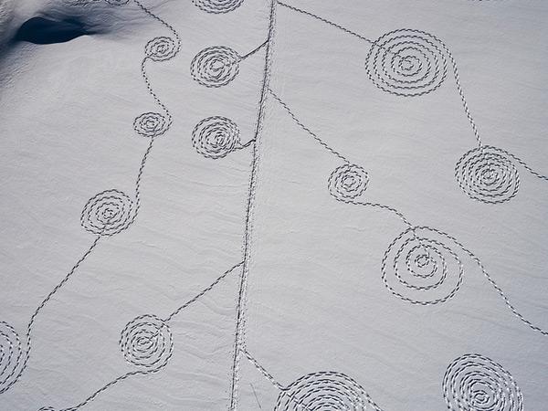 Snow Circles. Sonja Hinrichsen