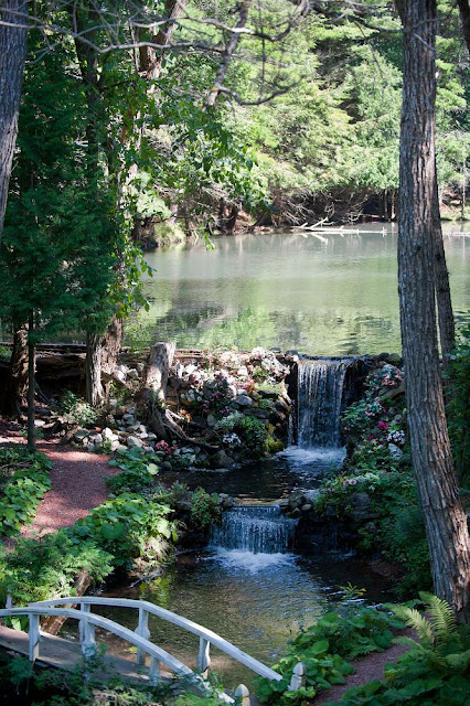 a small waterfall flows from the larger upstream pond, Marigold Springs Orillia
