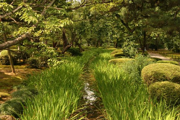 Letras de viajes jap n kanazawa jard n de kenroku en for Jardin kenrokuen en kanazawa
