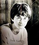 Generación Potter.