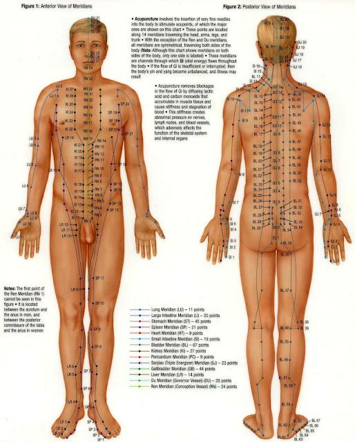 technique de massage sensuelle pdf