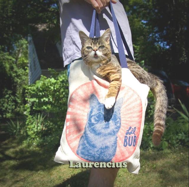 Kucing-Kurcaci-Lil-Bub_5