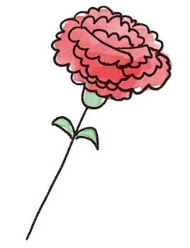 カーネーションのイラスト「花一輪」