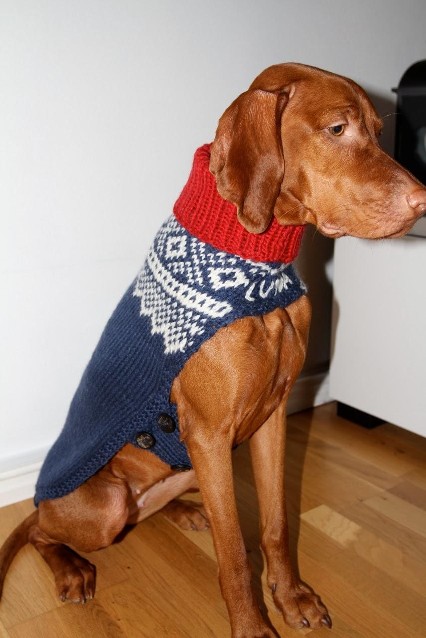 dekken med ben til hund