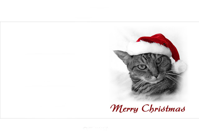 Christmas Cat cards printable wish card
