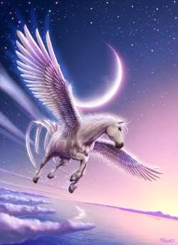 cavalo voando