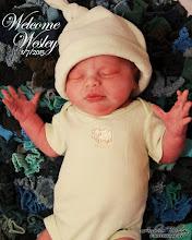 The Third- Newborn