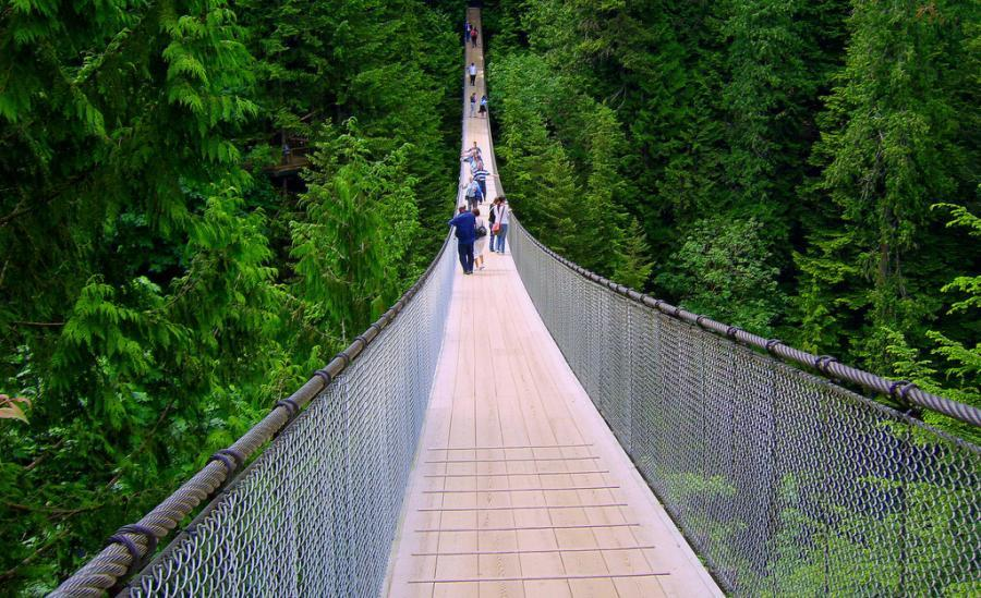 tourism capilano suspension bridge. Black Bedroom Furniture Sets. Home Design Ideas
